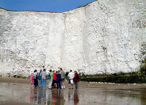 Thanet Coast Project